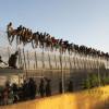 Африкийн цагаачид Марокког Испанийн Мелилья хотыг заагалдаг торон хашаан дээр