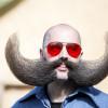 World Beard and Moustache Championships 2015