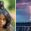 National Geographic-н 2016 оны шилдэг зургууд
